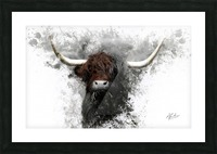 Highland Cow in Ink Picture Frame print
