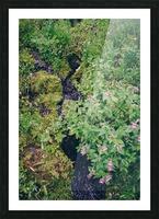 HDstudio.us 329 Picture Frame print