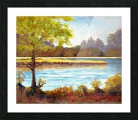 Conservation Land Picture Frame print
