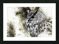 European Eagle Owl Picture Frame print
