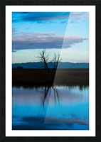 20190228 DSC_0081 3 Picture Frame print