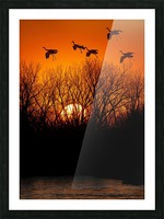 Dawn patrol over the Platte Picture Frame print