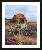 Arizona Desert Flowers Picture Frame print