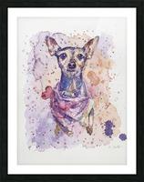 Chihuahua - Portrait of Gigi Picture Frame print
