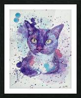 Tuxedo Cat - Portrait of Flash Picture Frame print