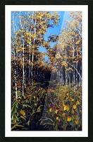 Fall Trail Fishcreek Park Picture Frame print