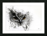 European Eagle Owl 01 Picture Frame print