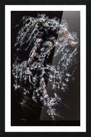 Hammer Head Shark Apparition  Picture Frame print