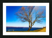 Seneca Springtime Picture Frame print