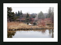 Bridge At York Lands Park Picture Frame print