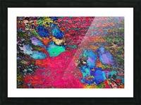 Paw Prints Colour Explosion Picture Frame print