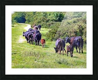 The Long Walk Home Picture Frame print