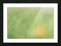 Abstract Art Bokeh - greens and yellow Picture Frame print
