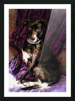 Purple Posing Puppy Picture Frame print