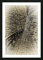 Pathway in Sepia Picture Frame print