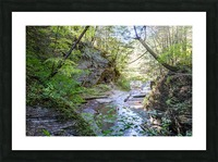 Eagle Cliff Falls 19 Picture Frame print