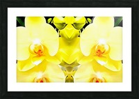 Yellow Orchid Pattern Picture Frame print