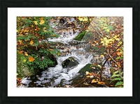 Autumn Flow Picture Frame print