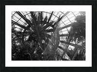 Bell Isle Conservatory Dome 1 BW Picture Frame print