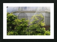 Belle Isle Consevatory Trellis Picture Frame print