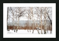 Canal Lachine Picture Frame print