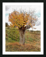 The Autumn Guardian Picture Frame print