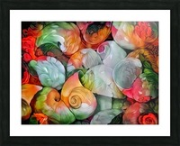 Seashell Colorful Pattern Picture Frame print
