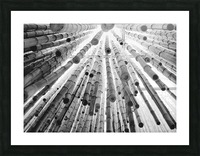 bamboo falling Picture Frame print