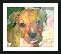 Dog Painting (20) Picture Frame print