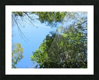 Landscape (200) Picture Frame print