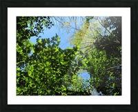 Landscape (181) Picture Frame print