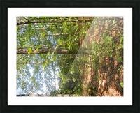 Landscape (105) Picture Frame print