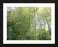 Landscape (288) Picture Frame print