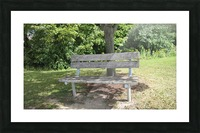 Bench (10) Picture Frame print