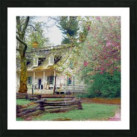 Prospect park Brooklyn Picture Frame print