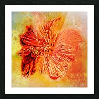 Tropical Hibiscus Floral Picture Frame print