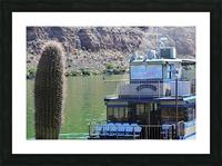 Desert Belle Picture Frame print
