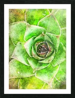 Flowers art Picture Frame print