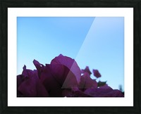 Flower (3) Picture Frame print