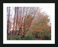 Fall Season (11) Picture Frame print
