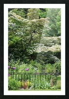 Garden with Dogwood 2018 Picture Frame print