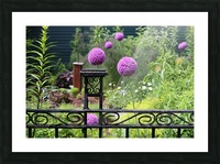In the Garden 2018 Picture Frame print
