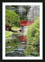 Red Bridge and Reflection 2 Dow Gardens 062618 Picture Frame print