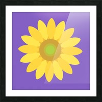 Sunflower (12) Picture Frame print