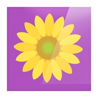 Sunflower (11) Picture Frame print
