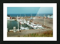 Low Tide - Canadian Harbour Picture Frame print