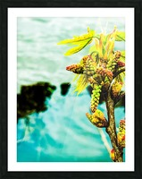 Floating Impression et Cadre photo