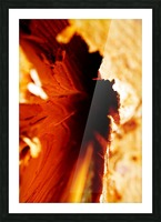 Abstract Macro Nature Photography 86 Picture Frame print
