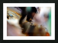 Abstract Macro Nature Photography 22 Picture Frame print