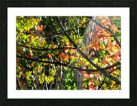 Stained  Glass Autumn Picture Frame print